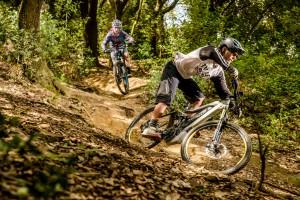 E-Bike-Tourismus boomt in Österreich auch dank innovativer Leasing-Modelle
