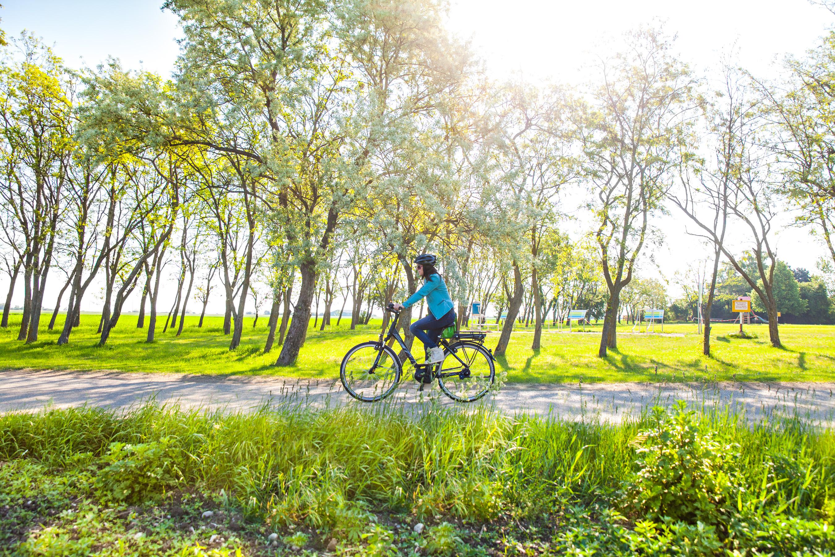 Keine Klimastrategie ohne Radförderung