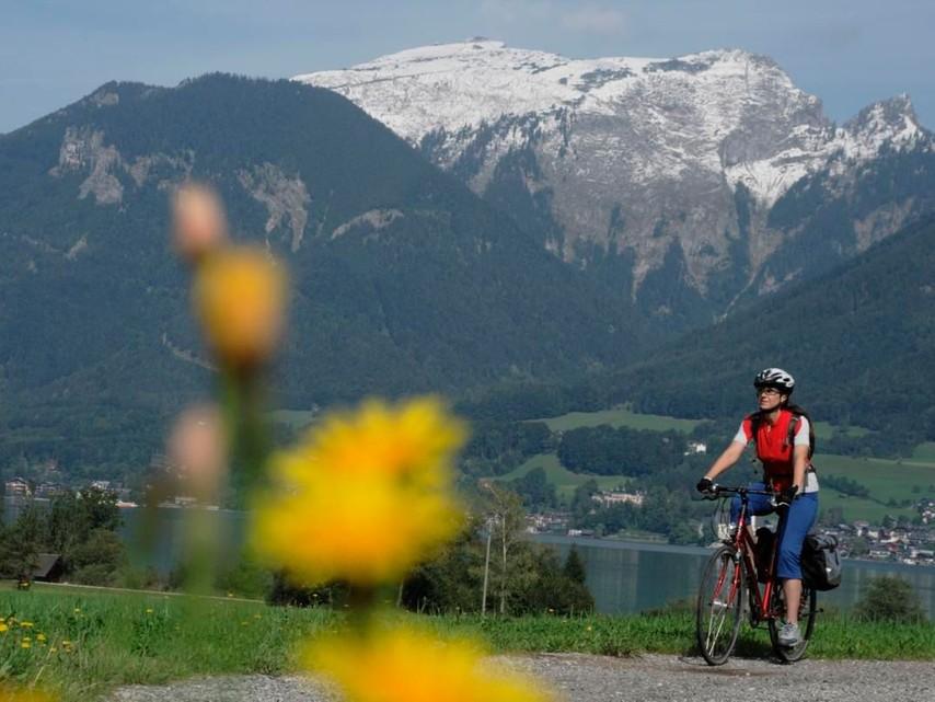 Radroutenkonzept für die Gemeinden rund um Stadt Salzburg